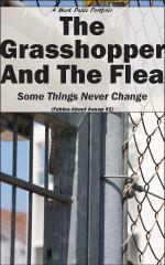 cover of The Grasshopper And The Flea