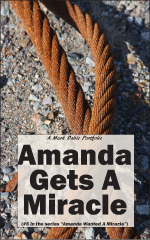 cover of Amanda Gets A Miracle