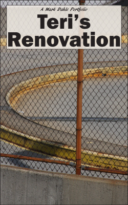 cover of Teri's Renovation