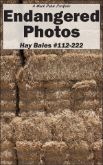 Cover of Endangered Photos: Hay Bales #112-222