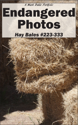 cover of Endangered Photos - Hay Bales #223-333