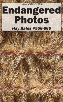 Cover of Endangered Photos - Hay Bales #556-666