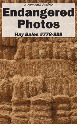 cover of Endangered Photos - Hay Bales #778-888