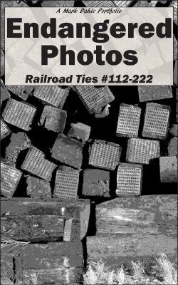 cover of Endangered Photos: Railroad Ties #112-222
