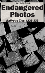 Railroad Ties 223-333