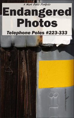 cover of Endangered Photos- Telephone Poles #223-333