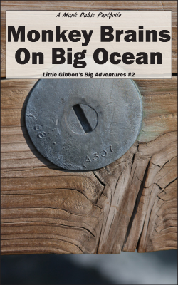cover of Monkey Brains On Big Ocean